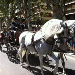 Desfile carruajes 3